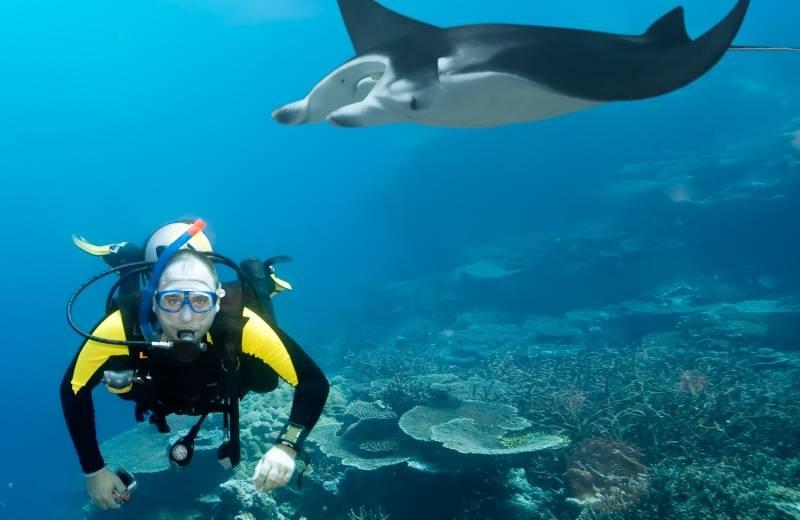 a61efaa85 Šnorchlovanie a potápanie - Maledivy | Dubaj.sk
